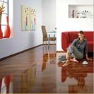 Elesgo Laminate Flooring