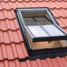 Conservation Windows