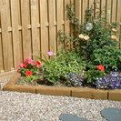 Timber Flower Bed